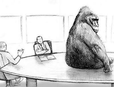 Litigation Funding & The Invisible Gorilla